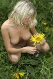 Valia - Summer Flowersa0chc4p3l6.jpg